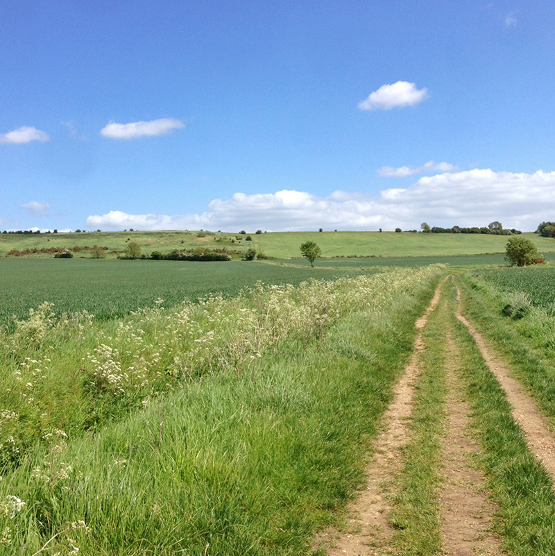 Lincoln, Viking Way, Splodz Blogz