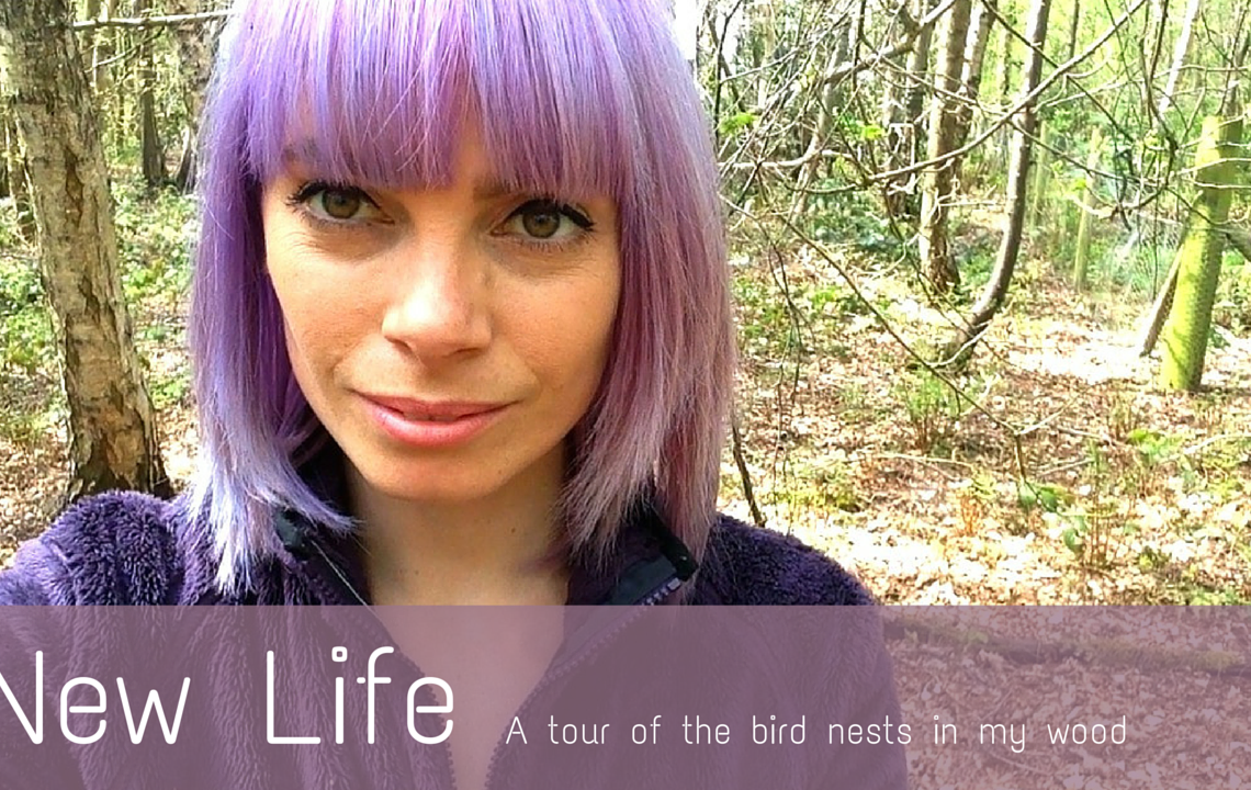 NEW LIFE | BLOG THEME FOR MAY