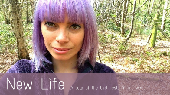 NEW LIFE   BLOG THEME FOR MAY